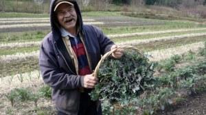 Kale John
